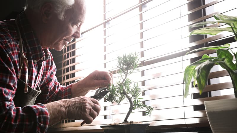 Man finds the silver lining in gardening