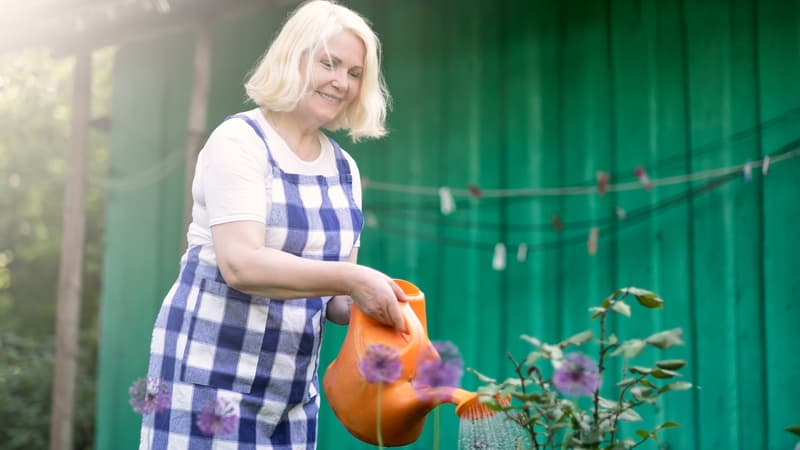 Senior woman waters the plants in the summertime heat