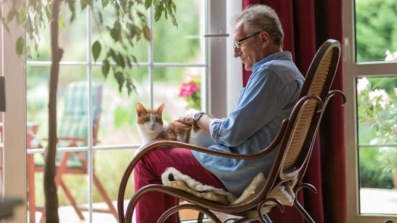 Senior man trying to figure out when to get a pet after one dies