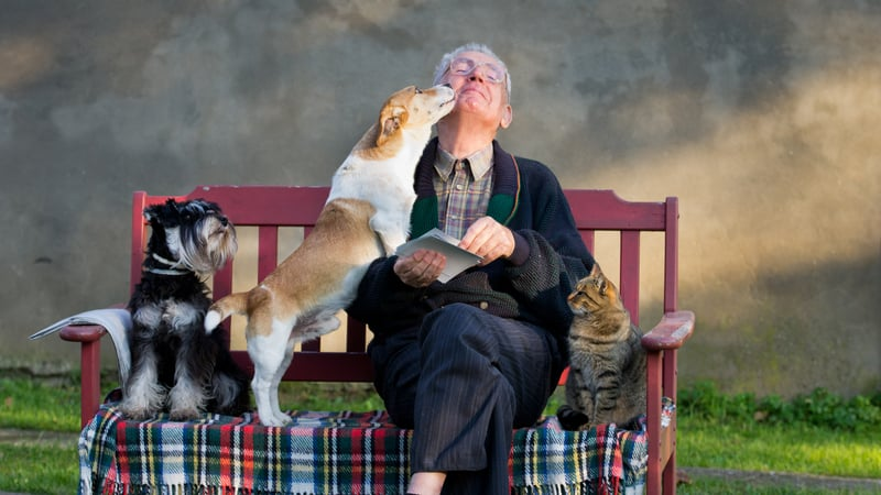 Man has the best pets for seniors