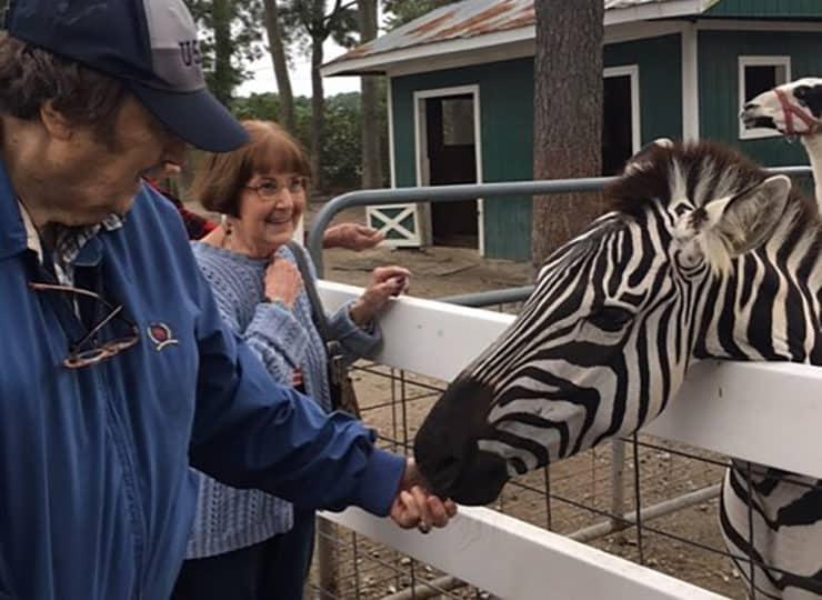 Commonwealth Senior Living Hampton Seniors Petting Zoo Zebra